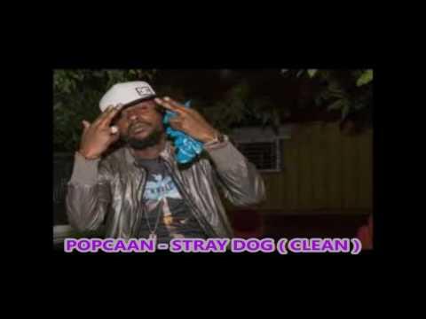 Popcaan - Stray Dog ( Clean )