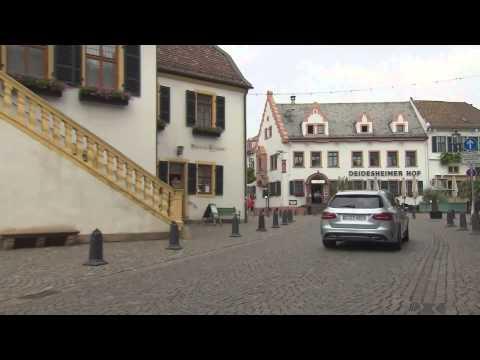 Mercedes-Benz C-Class Estate - Driving Event in Frankfurt-Deidesheim