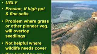 NRM 101 Lecture: Forestry Pt.3 Silviculture