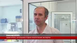 DOKTORA.BY: Анализ ДНК на отцовство в Минске, в Беларуси