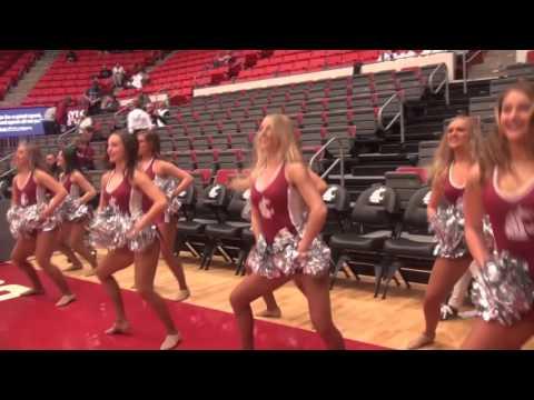 Washington State University Dance Team