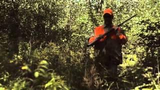Download Video Bird Hunting Season | Pure Michigan MP3 3GP MP4