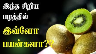 Amazing Health benefits of KIWI fruit | Tamil Health Tips