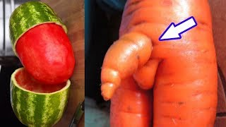 How to Increase Penis Size Using Herbs | Best Health