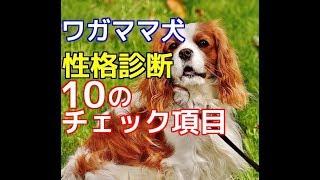 チャンネル登録はこちらからも可能です☆→http://ur0.pw/Gf0q 今回は、愛...