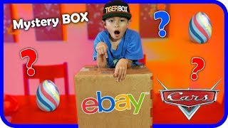 Tiger React to EBAY MYSTERY BOX OPENNING and Surprise Egg Disney Cars (Skit) - TigerBox HD