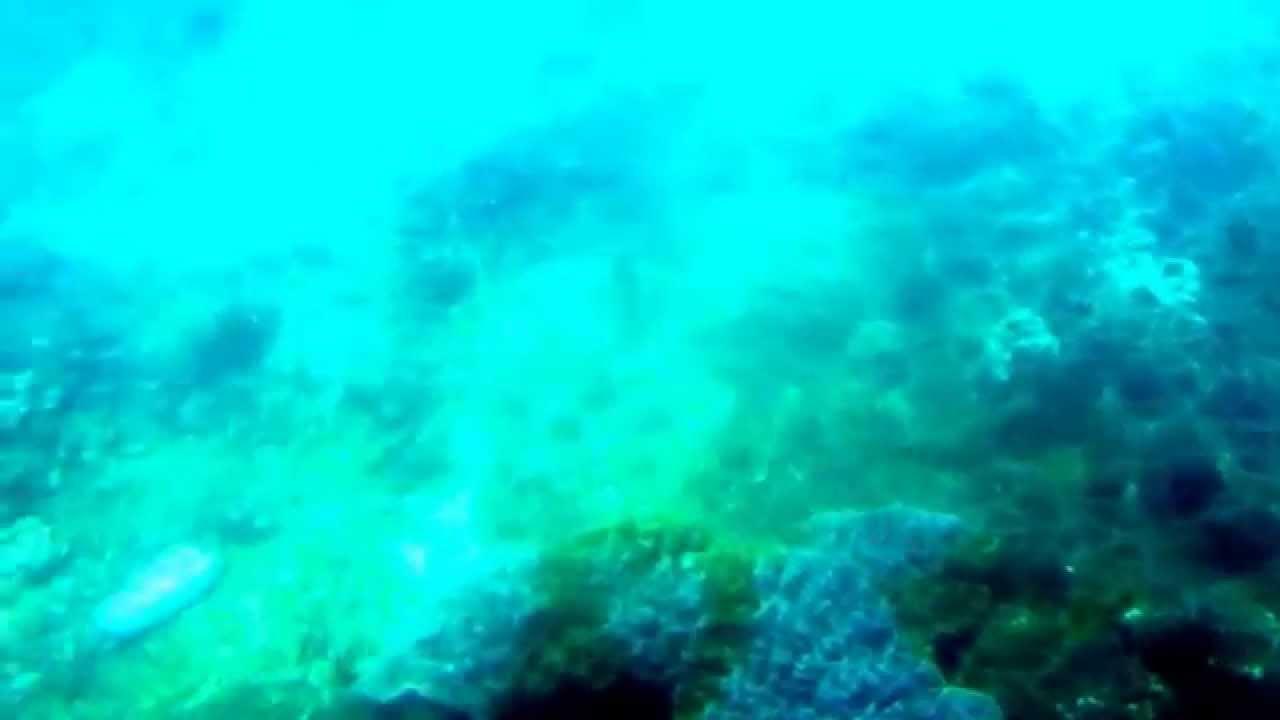 小琉球玻璃船--觀賞海底風光 - YouTube