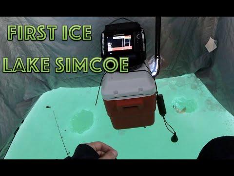 Lake Simcoe 2020 First Ice - Whitefish