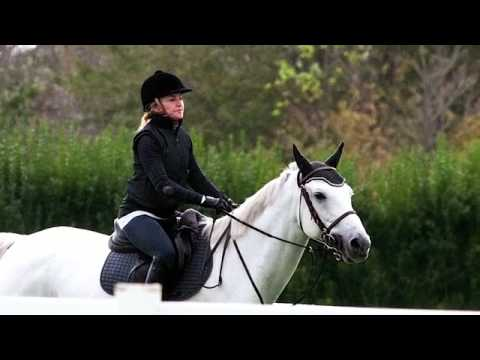 Madonna Horses Around In New York Youtube