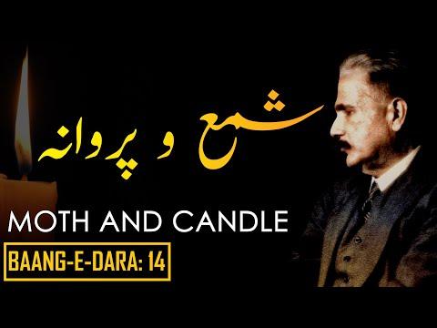 Baang-e-Dara: 14 | Moth and Candle |...