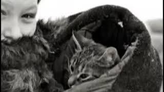 История про кота Ваську. Блокадный Ленинград.