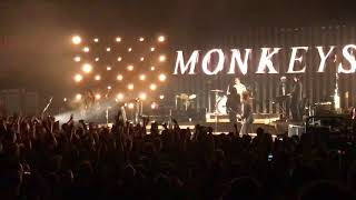 Скачать Arctic Monkeys 505 Live Royal Albert Hall London