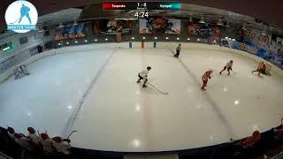 Шорт хоккей Мастер-Тур матч Торпедо - Вымпел