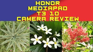 Honor Mediapad T3 10 Camera | Huawei Mediapad T3 10 Camera Review