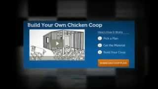 Chicken Hutch Plans