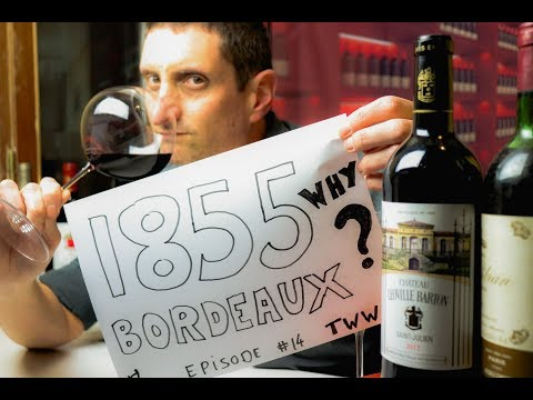 wine article 1855 Classification Bordeaux Wine  How Why What Now