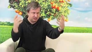 Как правильно смотреть кино - рассказывает кинокритик Антон Долин