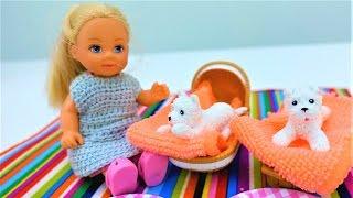 Видео про куклы: Кен и Барби приготовили сюрприз для Штеффи