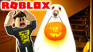 🐶😈HUNDEHVALPEN in the basement! -Roblox Scary Story