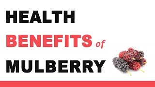 Health Benefits of Mulberry Fruit