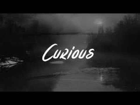 Hayley Kiyoko - Curious (Lyrics)