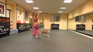 Хозяйка танцует со своей собакой