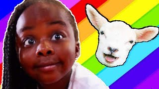 Baa Baa Black Sheep | Teaches Colors | Finger Paint