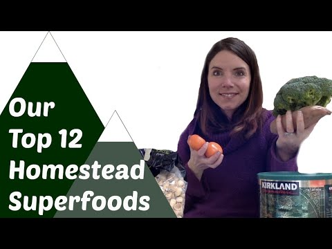 Top 12 Superfoods We'll Grow on our Homestead and What Superfoods to buy at the Store