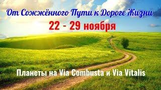 22-29.11 - Змееносец-2 или От Сожжённого пути к Дороге жизни