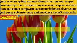 """Ынак Осмоналиев """"Айлуу кеч"""" кароеке"""