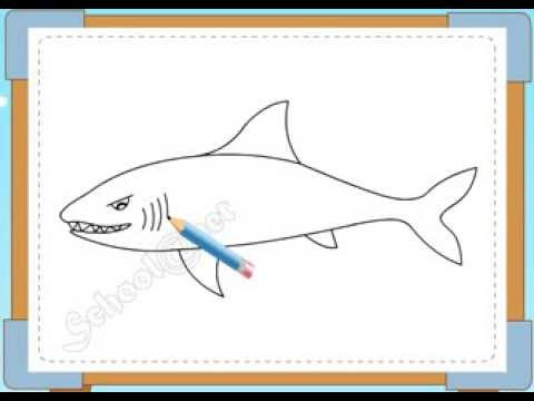 BÉ HỌA SĨ - Thực hành tập vẽ 157: Vẽ cá mập