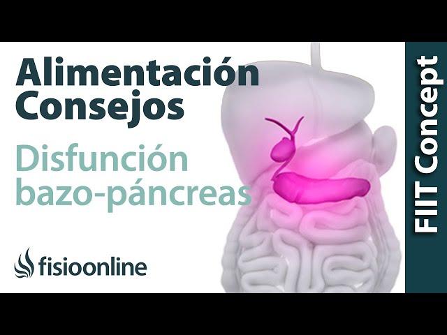 Alimentación, nutrición y consejos dietéticos para la disfunción de ...