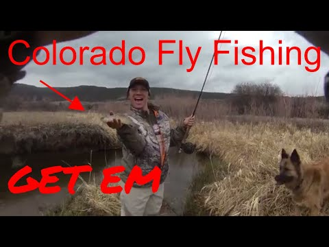 NEVER fished before, COLORADO CREEK fly fishing adventure 2018 vlog 25