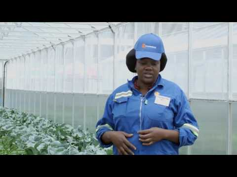 3  Communities to benefit from farming with the sun