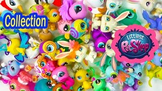 LPS Collection Tour Haul Video Littlest Pet Shop Bunny Rabbits Bugs Birds Cookieswirlc Part 2
