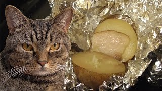 Картошка запеченная в духовке с салом. Простой и вкусный рецепт