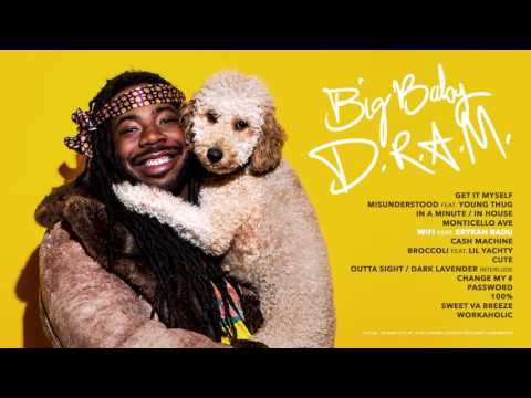 DRAM  WiFi feat Erykah Badu Audio