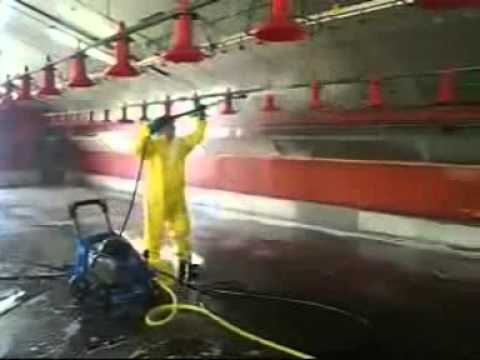 Poultry Industry Cleaning And Disinfection Poultry Farm