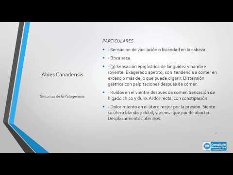 Abies Canadensis Medicamento Homeopático Youtube