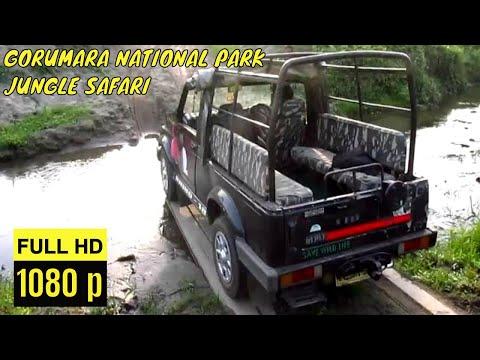 LATAGURI JUNGLE SAFARI GORUMARA NATIONAL PARK