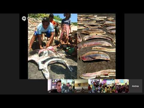 Sharks4Kids Marine Science Hangout: Dr. Andrea Marshall