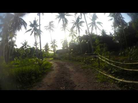 20150716 Walking to Bohol Coco Farm