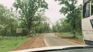 Iphone videography In pachmari satpura Tiger Reserve in Vitara Brezza