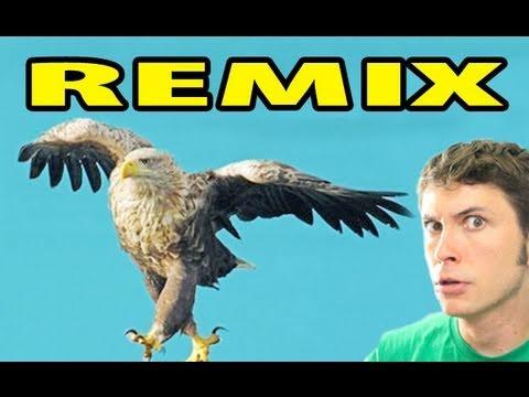 I'M A BIRD MOTHA' F***** REMIX!!