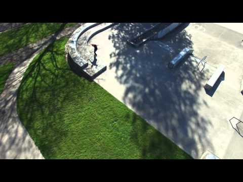 DJI Phantom 3 Professional - Lincoln Park, Forest  by Patrick Narvaez