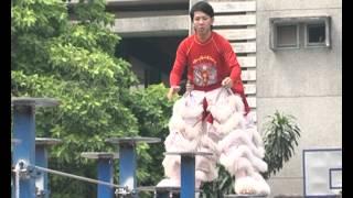LAN SU RONG HANG ANH DUONG