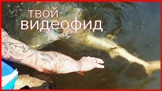 ПОЙМАЛ АКУЛУ ГОЛЫМИ РУКАМИ! || Видеофид
