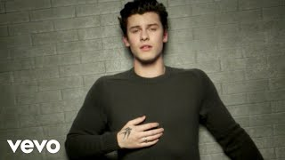 Shawn Mendes - In My Blood YouTube Videos
