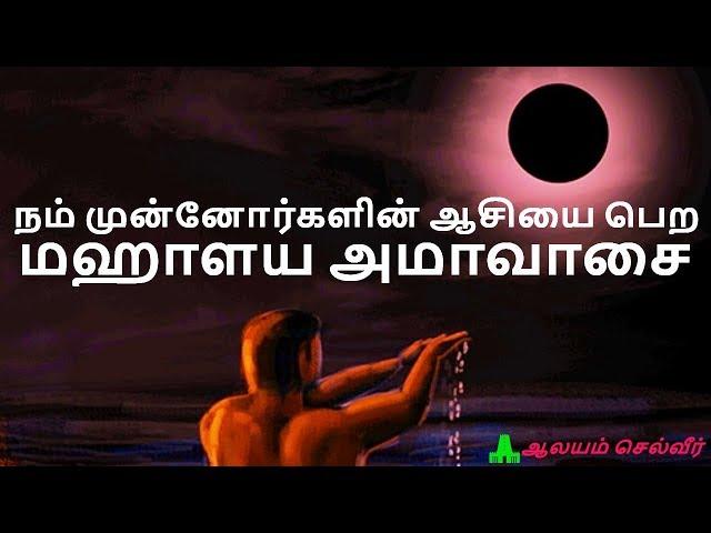 amavasya tharpanam video, amavasya tharpanam clip