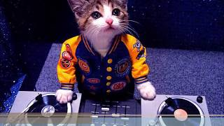 Gambar cover Dj breakbeat full bass 2018,Padang mixtape